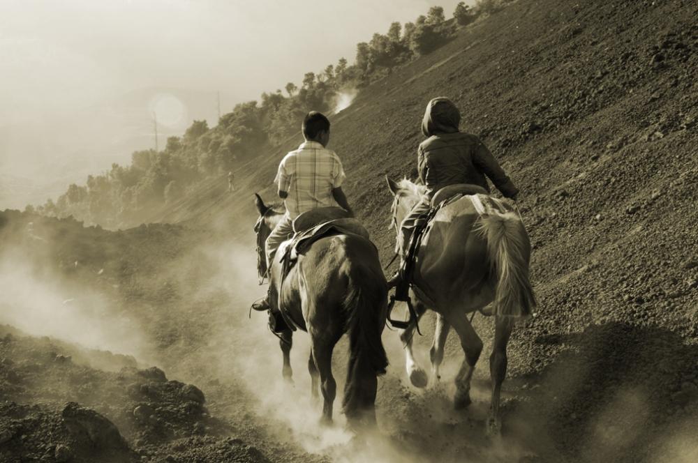 Taxi, taxi!. Pour ceux qui finalement réaliseraient ne pas être assez en forme pour monter le volcan, des chevaux ferment la marche... histoire de mettre un peu de pression...
