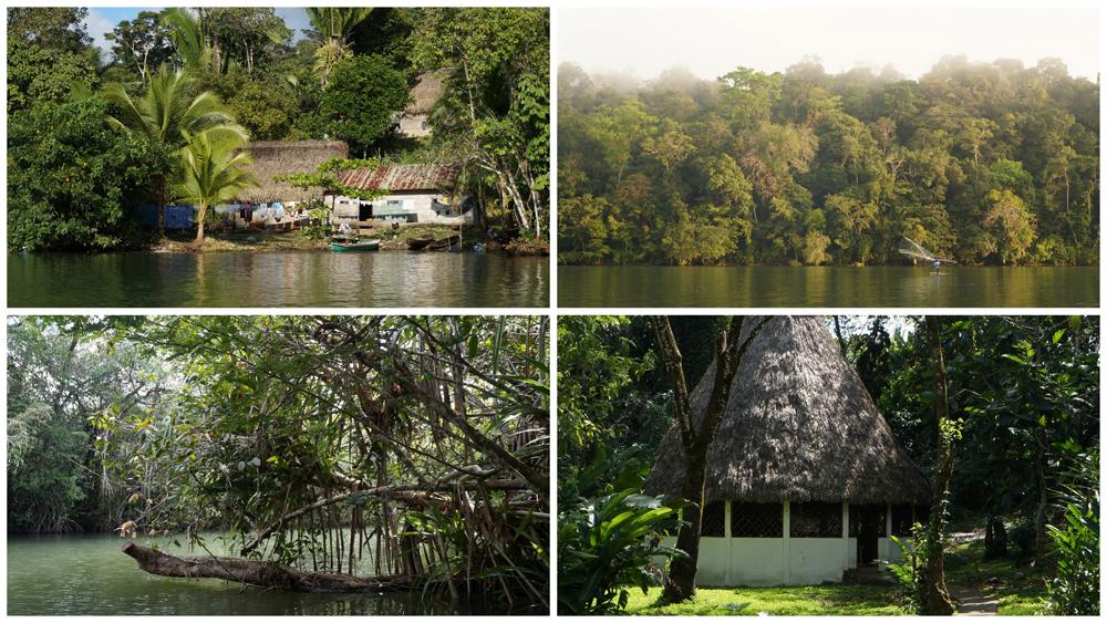 maison locale, pêcheur à l'oeuvre, mangrove, hutte-salle de classe